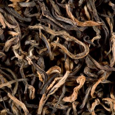 Thé d'Inde - Nilgiri Chamraj Golden Tips