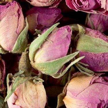 Tisane - Boutons de roses