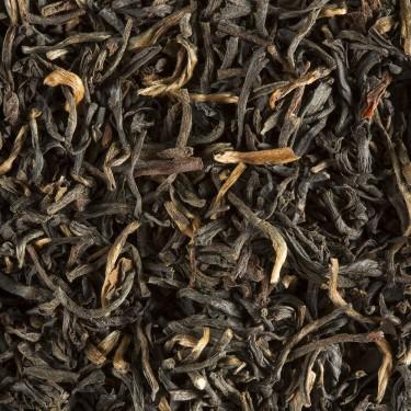 Thé d'Inde - CHAMPAWAT